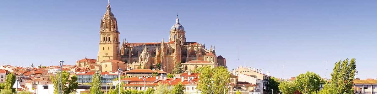 Cathédrale de Salamanque en Espagne